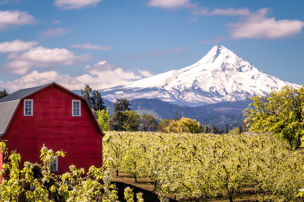 Hood River and Mount Hood