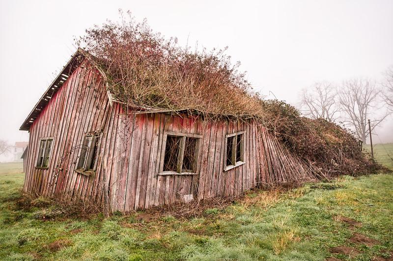 Wavy barn.