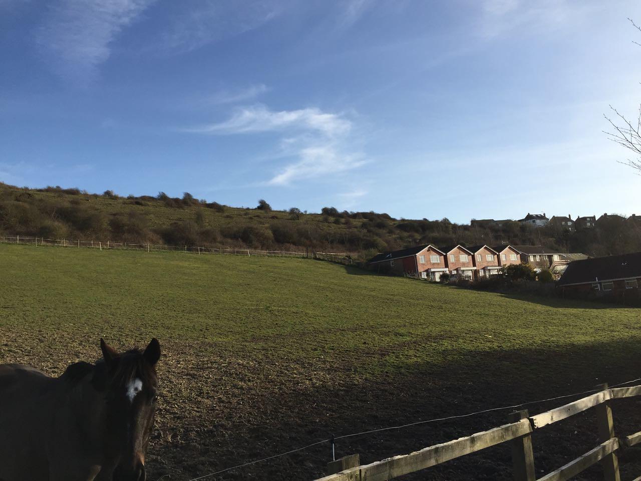 Coomber Meadow, Saltdean - 16