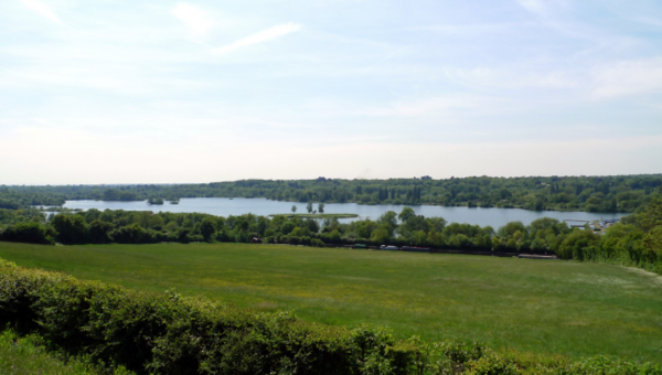 VIEW FROM THE OLD ORCHARD (ABOVE)