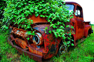 Old Ford truck, seen better days