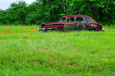 Old Buick in a field of wildflowers near I-10 and US183