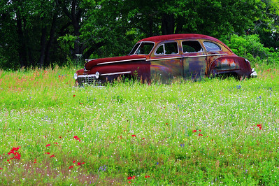 Old Buick in a field of wildflowers near US183 @ I-10