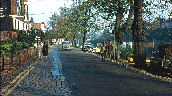 A Walk along the Groves 1960s