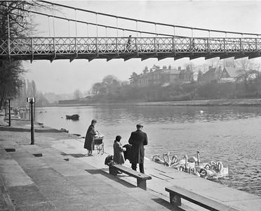 Groves c 1950