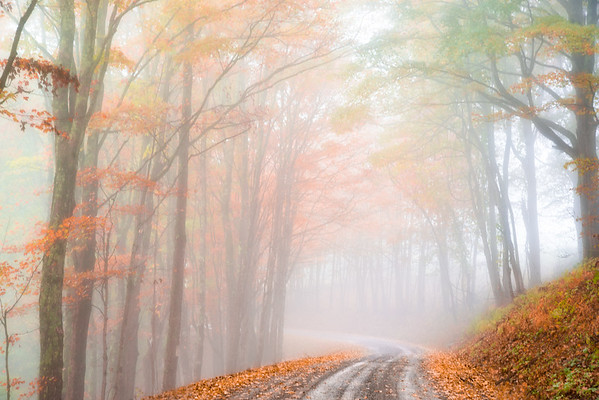 Oct 23 - Color In The Fog<br /> <br /> West Virginia Country Road