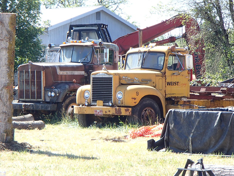Old Trucks at Weist Logging Philomath, OR