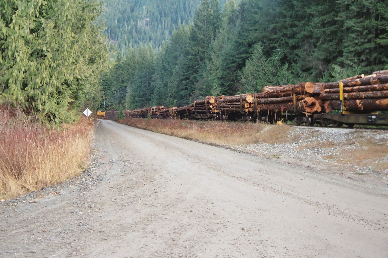 20031125 Modern Logging Train on Vancouver, IS Canada