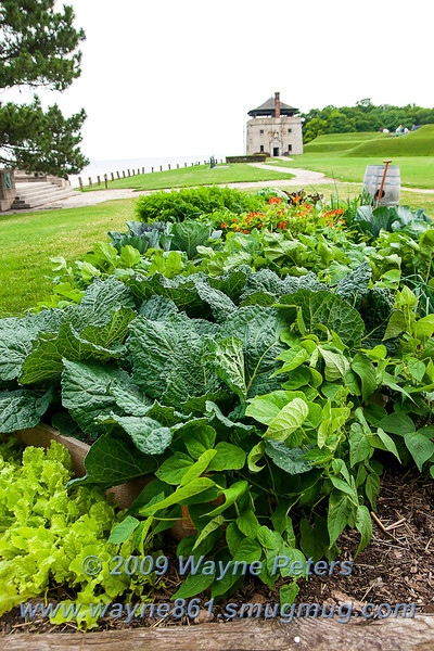 The gardens at Old Fort Niagara, July 25, 2009.