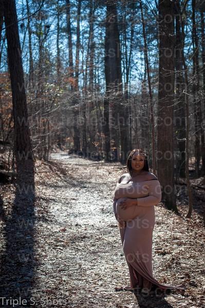 Jewel Maternity Photo -132.jpg