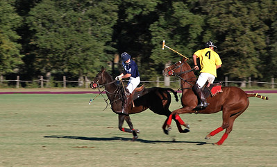 Polo on the Midway 2010