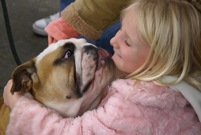 11-Toughy___sweetie_at_Dog_show_SF_08_by_JeanRicket