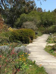 02-A83B94 [e] Arboretum Path  by Marlene