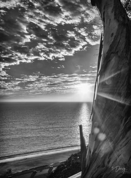 Pacific Palisades, CA
