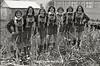 1979 BB Cheerleaders 046
