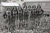1979 BB Cheerleaders 047