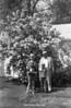 1970 sheet 48 568 tif family by bush