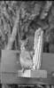 1970 sheet 39 squirrel w corn 786