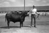 1974 Dave Needham sht 51 013