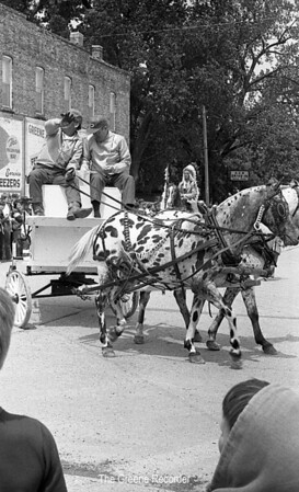 1974 RD Parade 314spotted horses