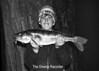 1977 Barth Big Fish sheet 19 989