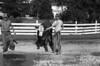1978 4H calf sheet 112 421