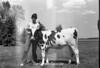 1978 4H Livestock sht 38 455