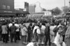 1981 Homecoming rally sheet 39 639