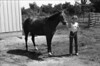 1981 4H animals n pets 978