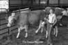 1981 4H animals n pets 982
