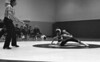 1981 Janesville wrest850