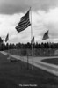 1984 Avenue of Flags 246