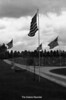 1984 Avenue of Flags 247