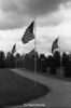 1984 Avenue of Flags 244