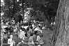 1984 River Days Water Hawks crowd sheet 18 226