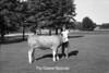 1986 4H Animals 66 677
