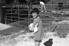 1986 4H Animals 66 673