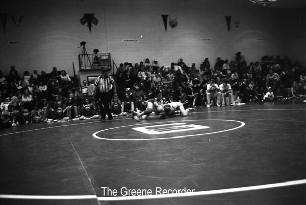 1991 Wrestling