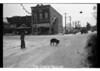 1977 Pig Downtown Dec 17616