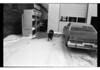 1977 Pig Downtown Dec 17613