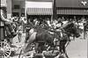 UK 11 Parade Horses 467