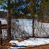 NASHOBA VALLEY VOICE/ANNE O'CONNOR<br /> The Harbor Pond in Townsend iced over in the early days of spring. The Squannacook River Rail Trail will run beside it.