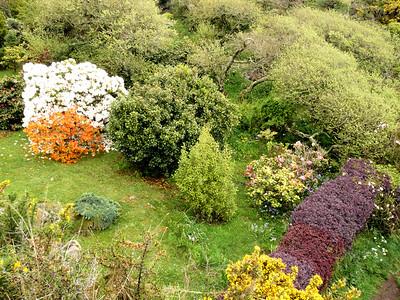 Somebody's Garden