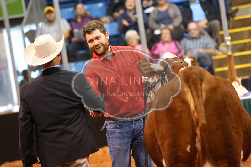 Old Home Week Beef Show 2017
