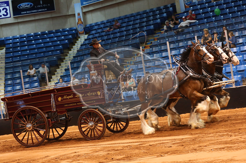 Old Home Week Draft Horse Show Cart Classes 2017