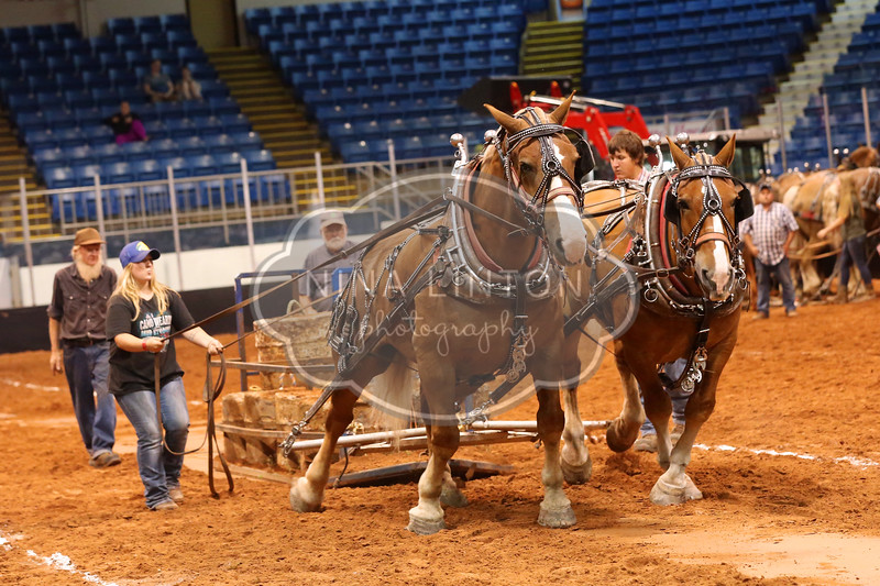 Old Home Week Horse Pulls 2017