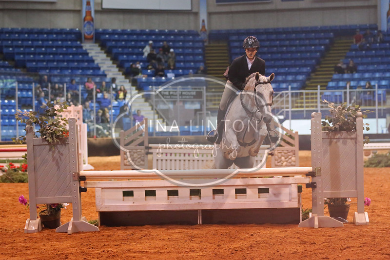 Old Home Week Light Horse Show 2017