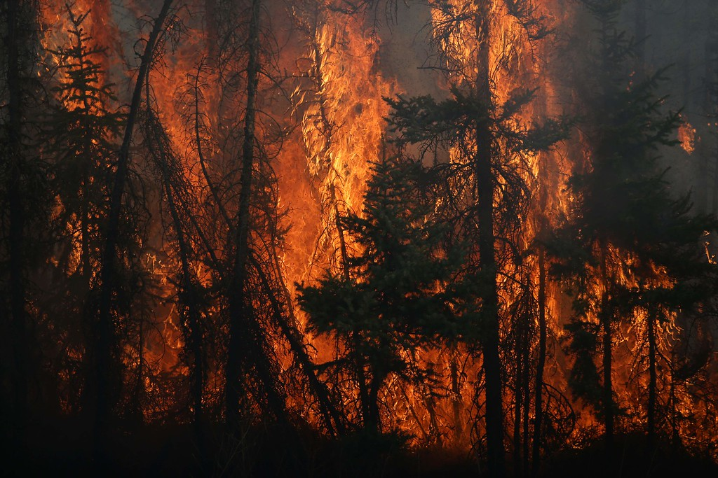 . Flames engulf trees along a highway near Fort McMurray, Alberta, on May 6, 2016.  Canadian police led convoys of cars through the burning ghost town of Fort McMurray Friday in a risky operation to get people to safety far to the south.In the latest chapter of the drama triggered by monster fires in Alberta\'s oil sands region, the convoys of 50 cars at a time are driving through the city at about 50-60 kilometers per hour (30-40 miles per hour) TV footage showed.  / AFP PHOTO / Cole Burston/AFP/Getty Images