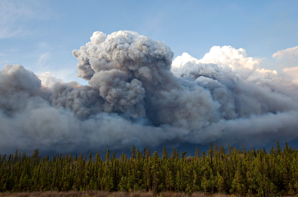 . Smoke rises above trees as a wildfire burns in Fort McMurray, Alberta on Wednesday, May 4, 2016. Alberta declared a state of emergency Wednesday as crews frantically held back wind-whipped wildfires that have already torched homes and other buildings in Canada\'s main oil sands city of Fort McMurray, forcing thousands of residents to flee. (Jason Franson /The Canadian Press via AP)