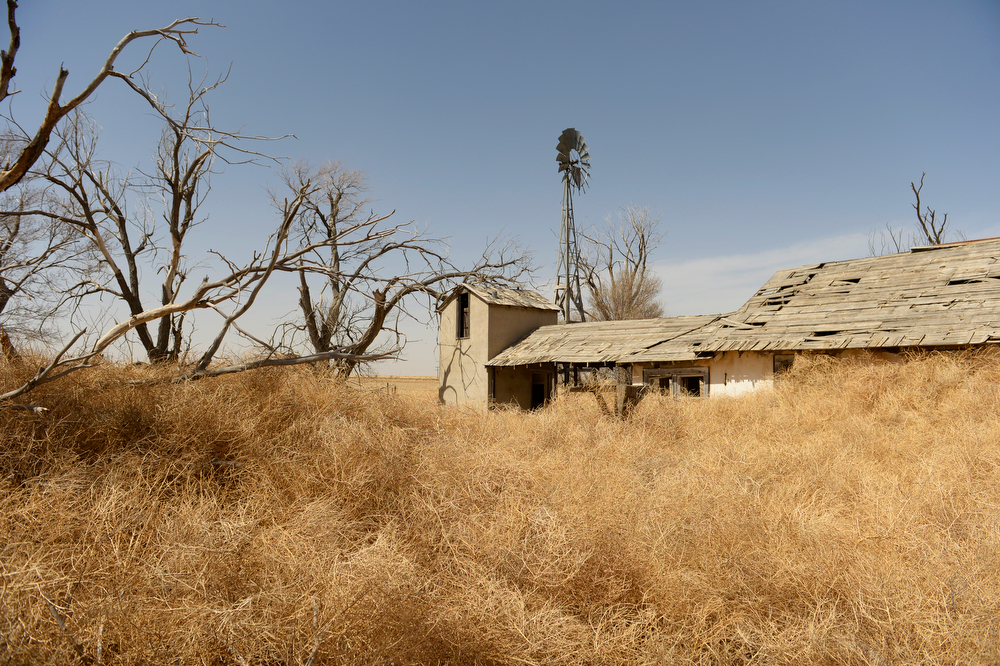 . SPRINGFIELD, CO - APRIL 01: Tumbleweeds pile up around an abandoned home in Haswell, Tuesday, April 01, 2014. Massive dust Storms that bedeviled the region last year are back this spring, stirring memories of the Dust Bowl in the 1930s. (Photo by RJ Sangosti/The Denver Post)